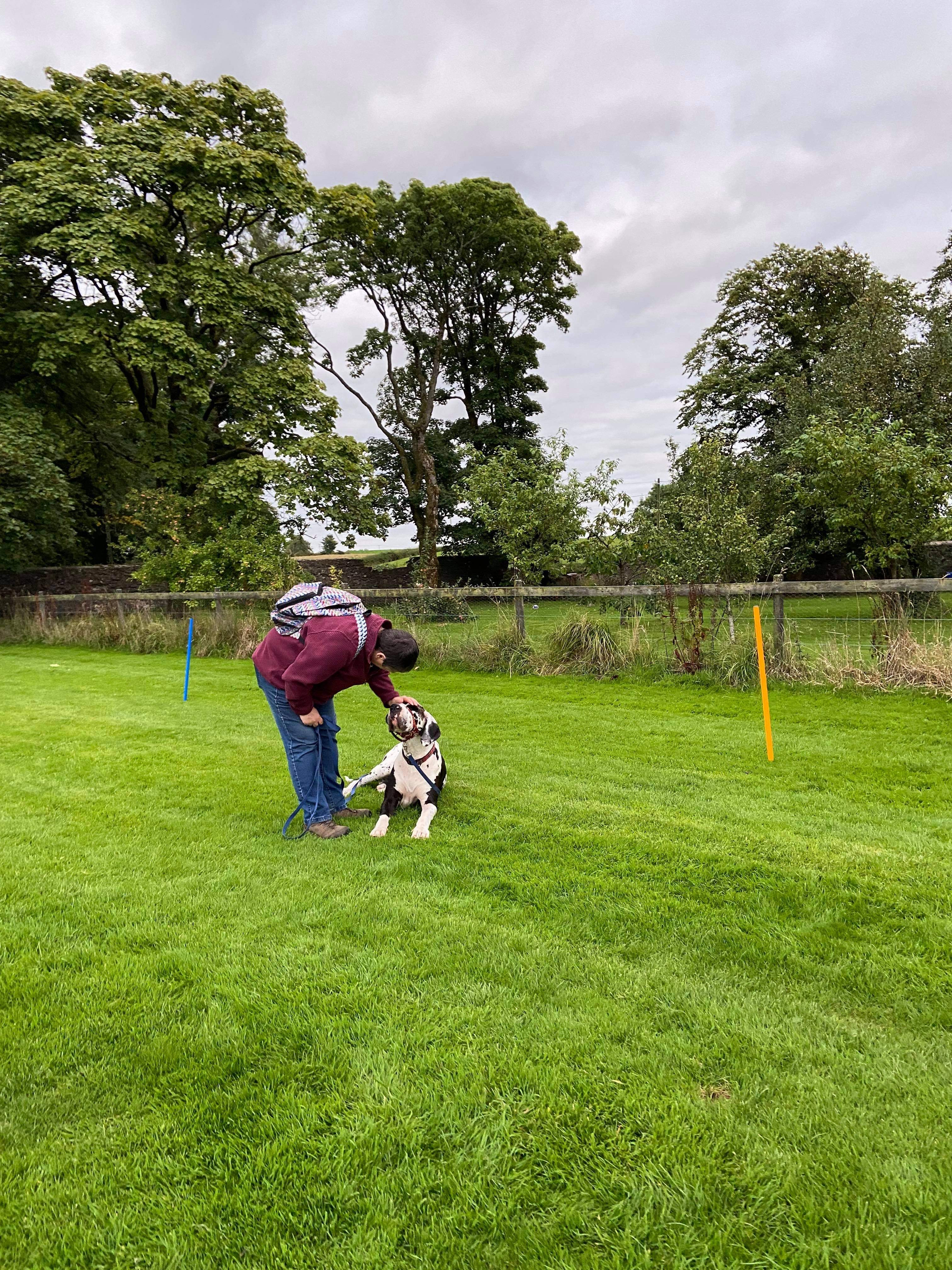 Advanced Obedience Course - 4 Weeks