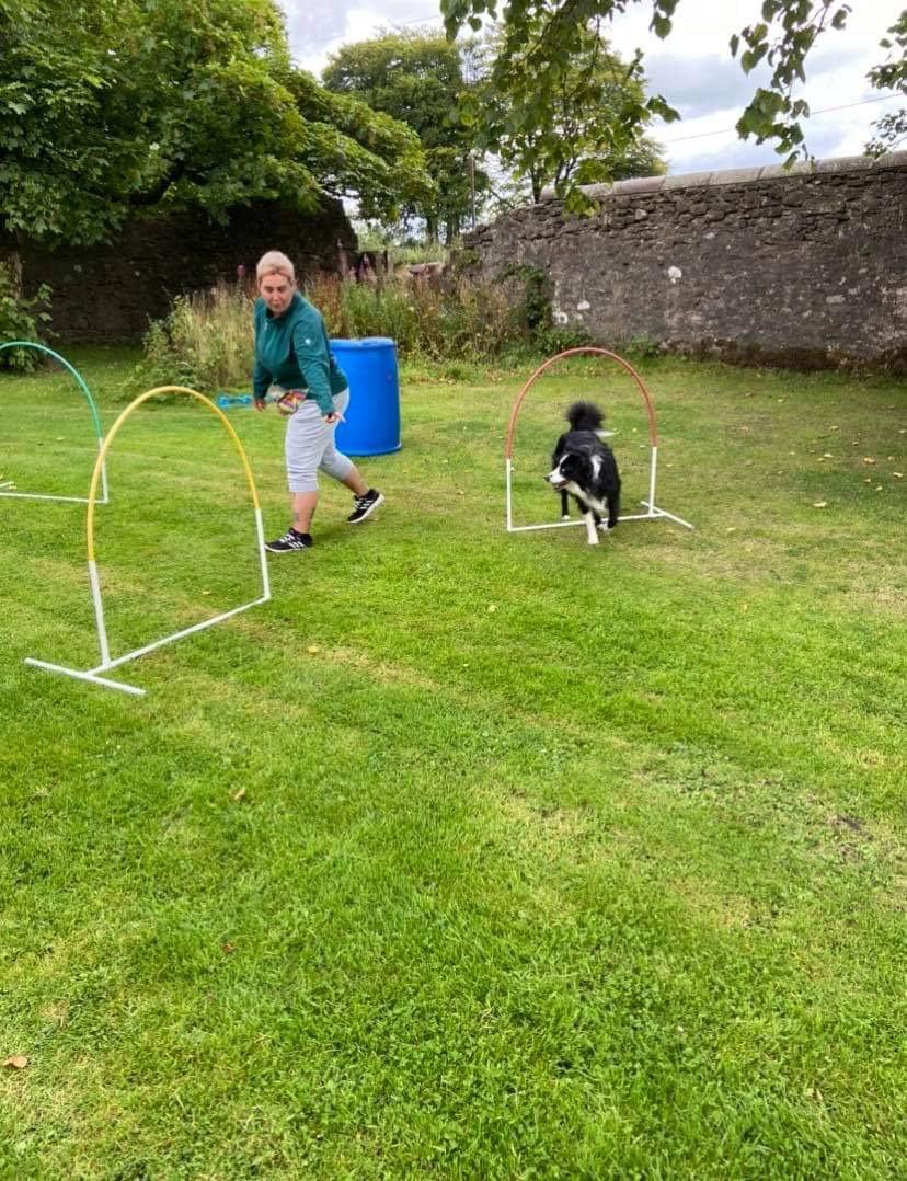 Canine Hoopers Intermediates - 4 Weeks
