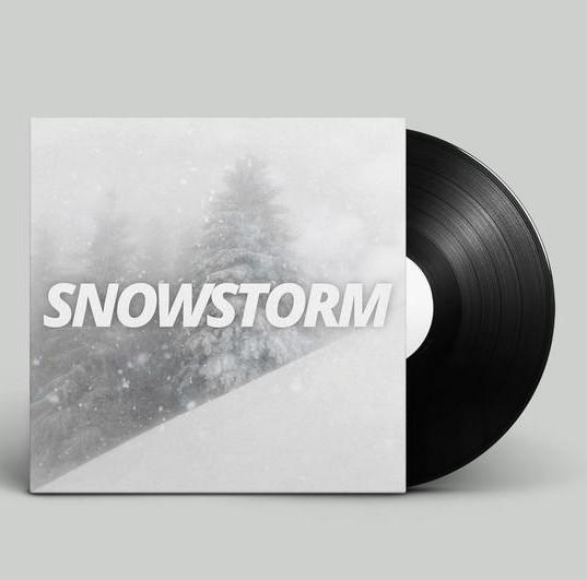 Snowstorm_750x.jpg