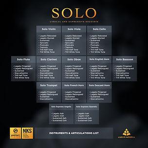 Solo-Info-Instruments-Articulations.jpg