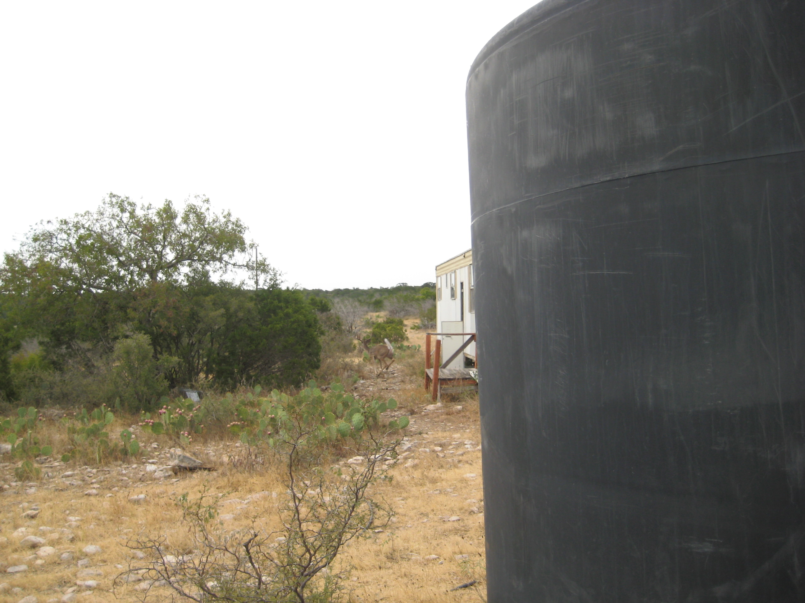 3000 Gallon Camp Water Storage