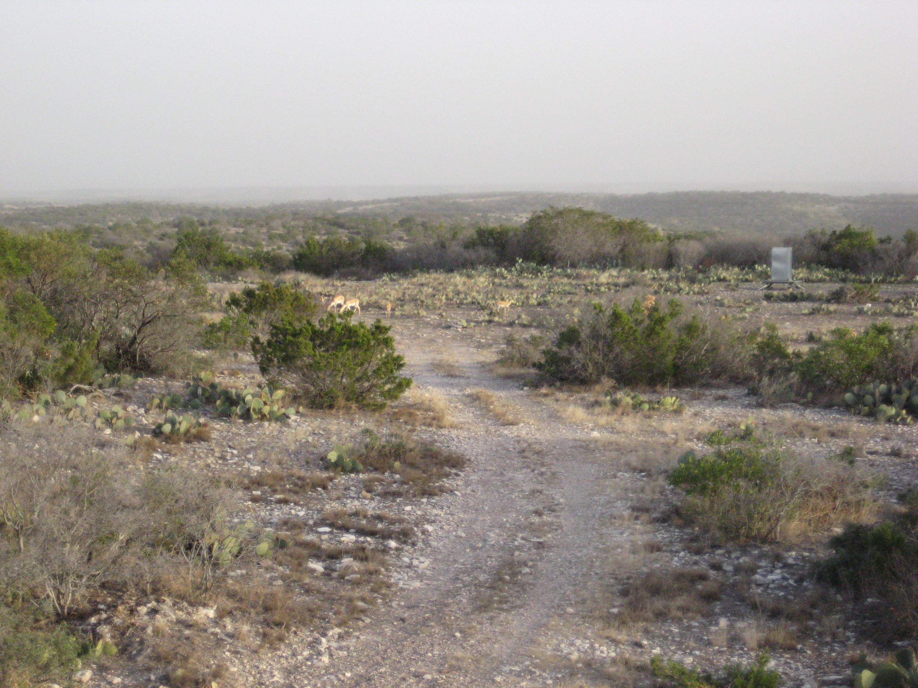 Areas on Property (9)