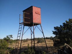 4 tile stand on property