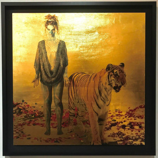2018  Size: 36x36 in. (91.5 x 91.5 cm.) Frame: 40x40 in. (101.6 x 101.6 cm.) Wood covered with 24k Gold Leaf​.​ Photography overlay in an extremely sensitive Process. Framed in a Black Shadow Box Open Frame with Charcoal Grey Matting.   Please contact gallery for price.