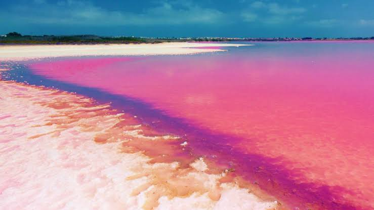 Pink lake source: Astic
