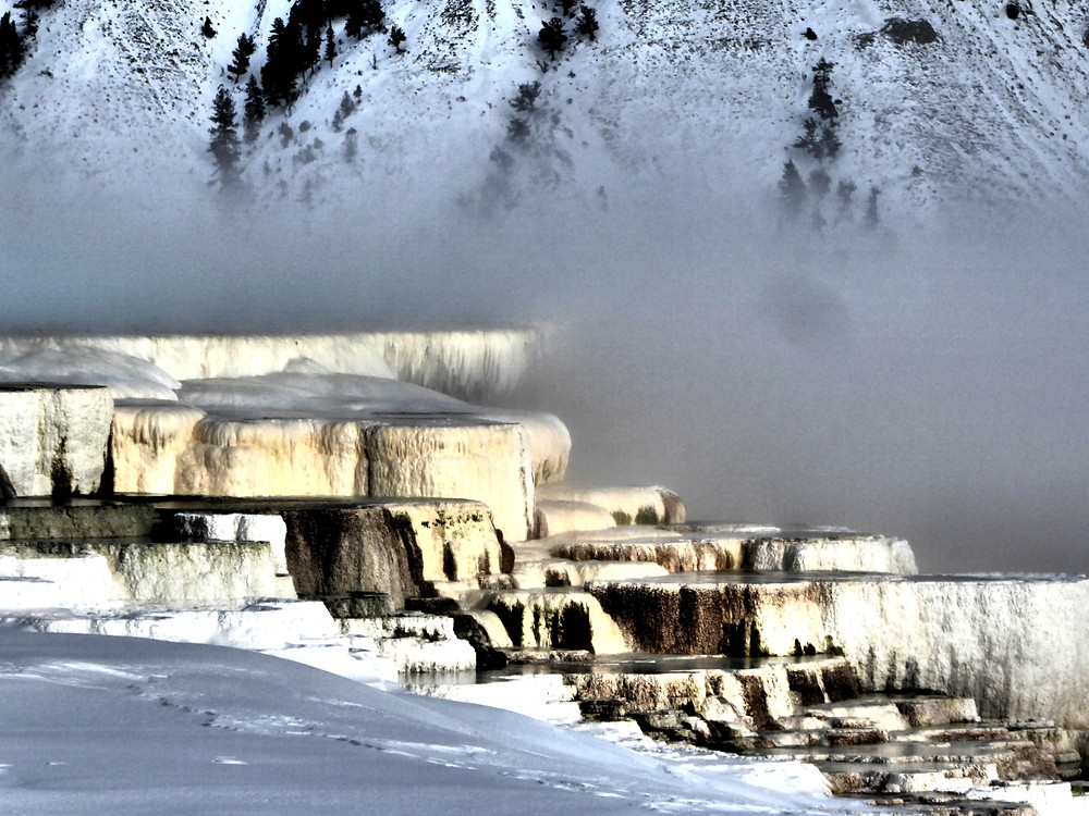 An otherworldly, monochromatic Mammoth Hot Springs in detail; Yellowstone National Park