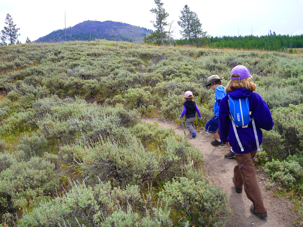 A family hike on a private guided tour in Yellowstone Park.
