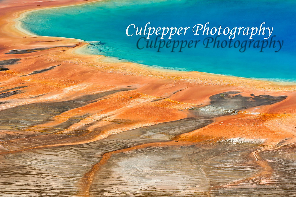 Colorful microbes in Grand Prismatic Hot Spring in Yellowstone National Park