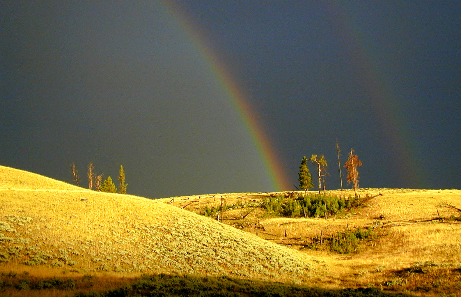 Lamar Valley Rainbow, Yellowstone National Park
