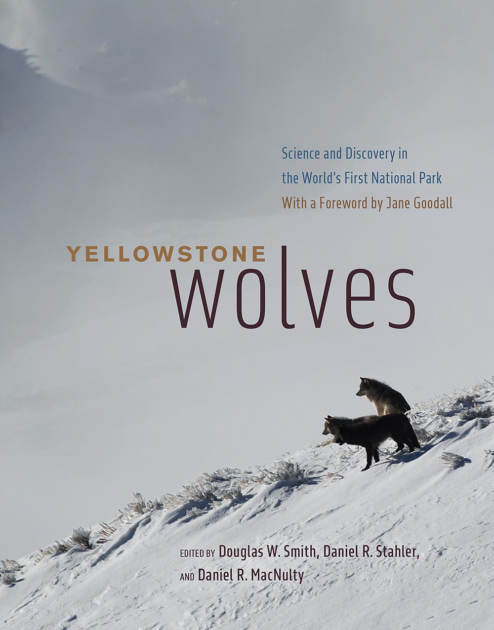 Book title, Yellowstone Wolves: Science and Discovery in the world's first national park