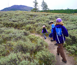 Kid friendly guided hike in Yellowstone Park