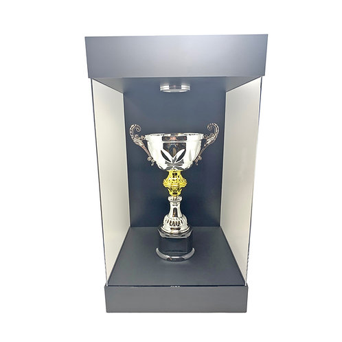 "Elite E-03T Matte Black LED Lighted Display Case for Most Trophies up to 16""Tall"