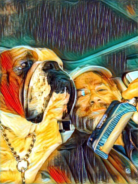 vaping bulldog image, vape