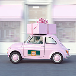 pink_bil.jpg