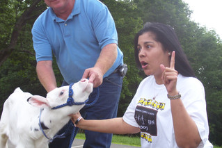Kissing a cow and other necessary leadership attributes...
