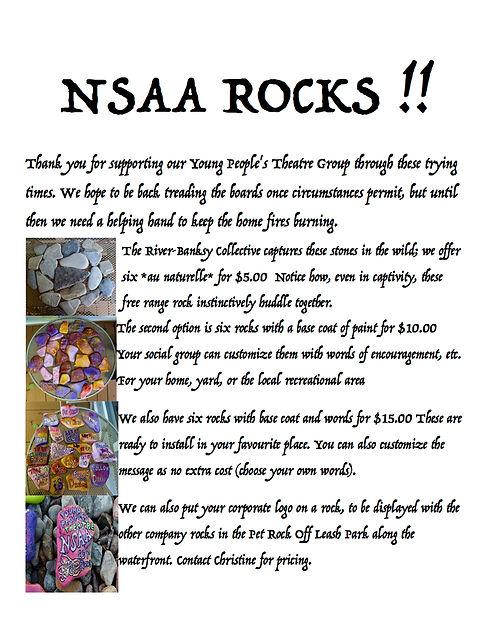 nsaa rocks 1.jpg