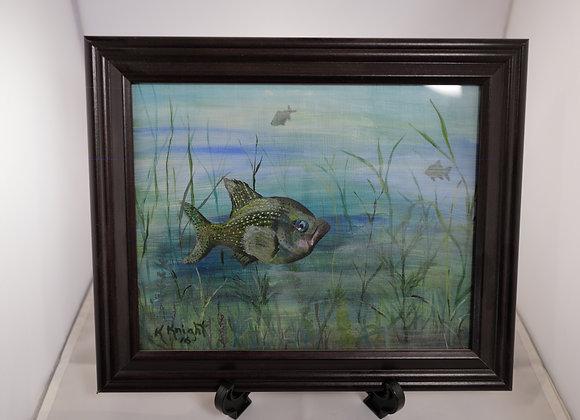 Kim Knight : Fish in the Sea