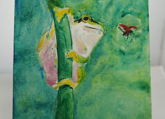 Melanie Fyfe-Baarda : Frog and Fly
