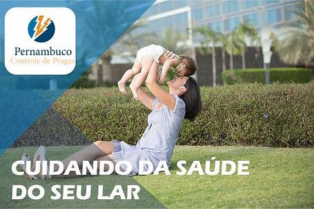 Pernambuco Controle de Pragas