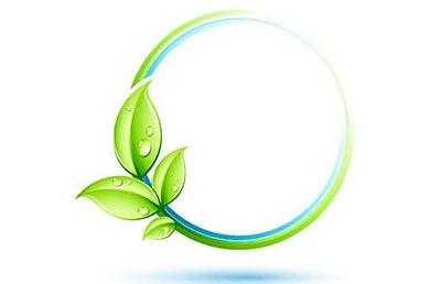 dedetização ecológica