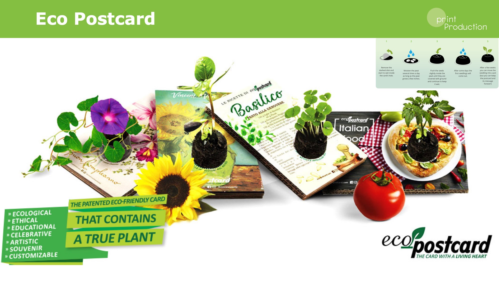 Eco postcard