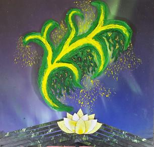 Lotus Lights 32