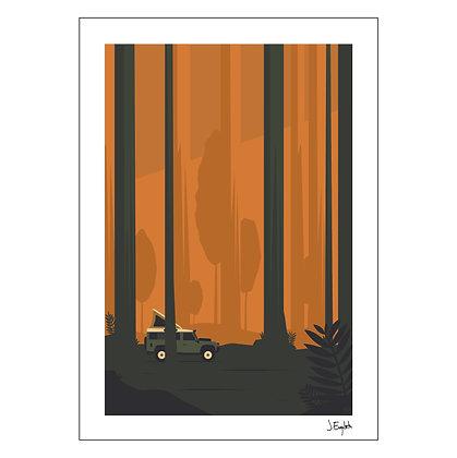 Into The Woods   Jaykee Evangelista