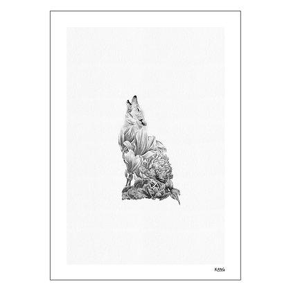 Lone Wolf | Kris Kang