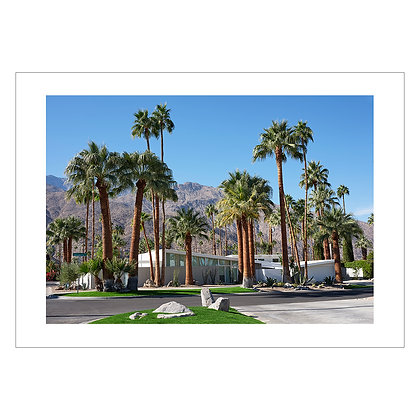 PALM SPRINGS 5 | Tom Epperson