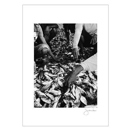 FISHERMEN OF PANGASINAN, 2016 | Johann Bona