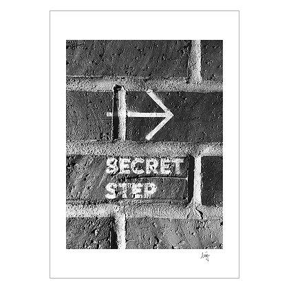 Secret Step | Ching Araujo