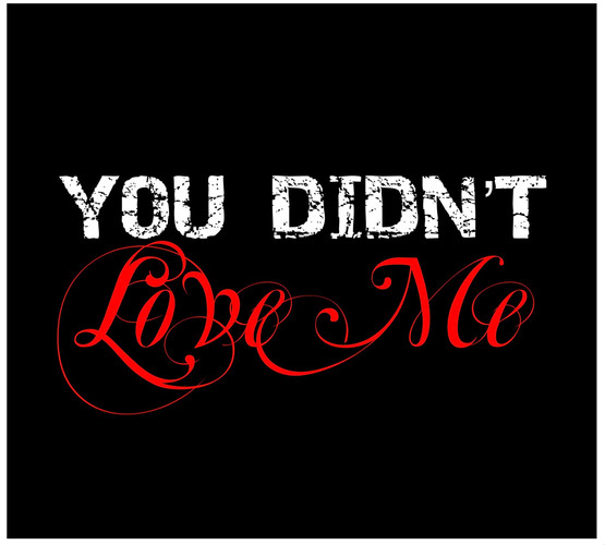 You Didn't Love Me is now available!!