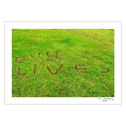 Where The Grass is Greener | Lena Cobangbang