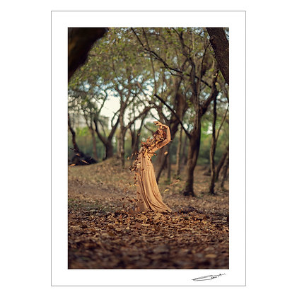 AMIHAN | Carina Altomonte