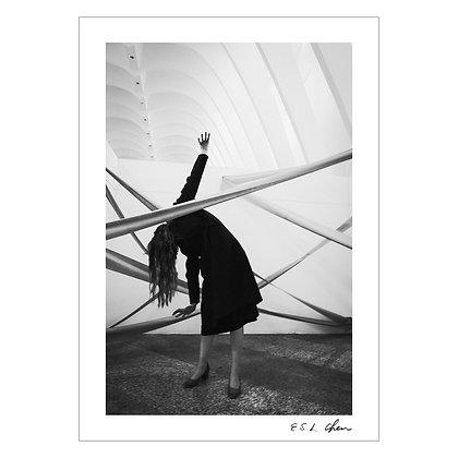 Calatrava and Ribbons | E.S.L. Chen