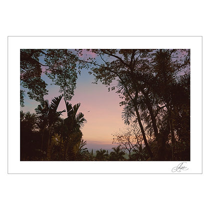 UNTITLED 3 | Charisma Lico