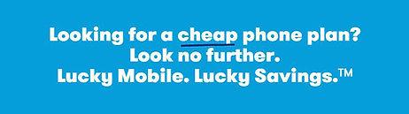 low cheap.jpg