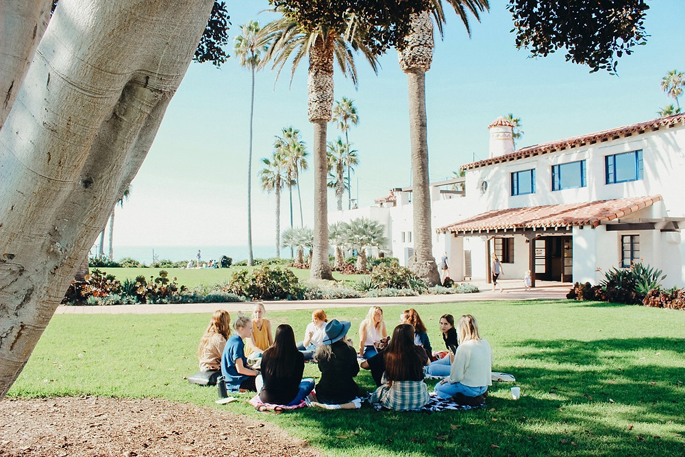 Picture of a number of white people sitting in a circle on the grass in the sun. There are a shrubs, palm trees and a house in the background and the sea can be seen in the distance.