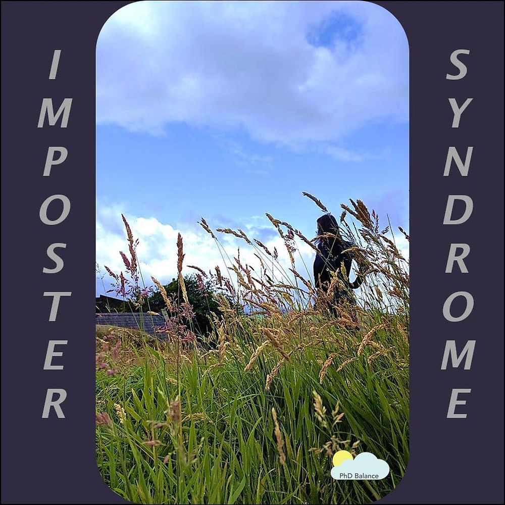 Picture of the shadow of a person obscured by the long grass in a field, the sky is blue and cloudy. The words imposter syndrome is written on the picture.