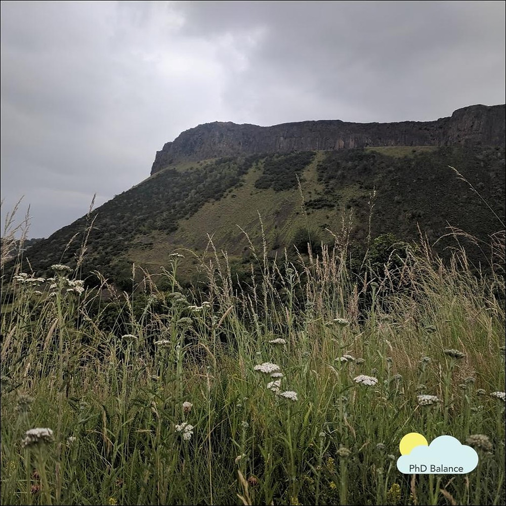 Picture of a hill side taken through a field of grass on a cloudy day.