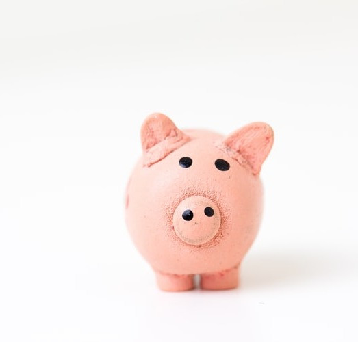 Picture of a piggy bank on a plain white background.