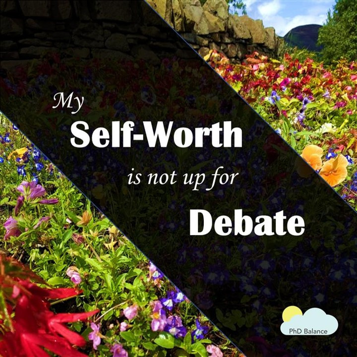 Graphic - text reads my self-worth is not up for debate. The picture in the background is a field of flowers.