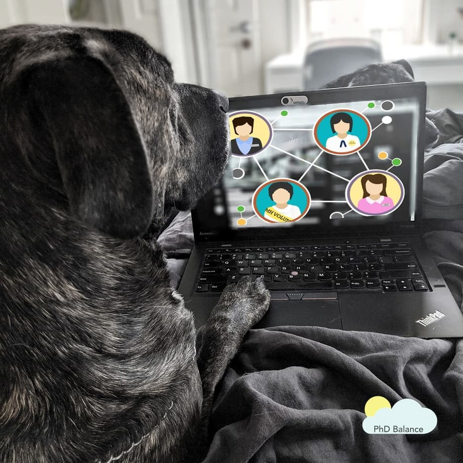 Picture of a laptop of a bed with a dog resting its paw on the keyboard of the laptop and another dog barely visible behind the laptop screen.