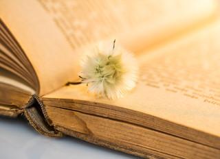 Le Livre de Vie de l'Agneau