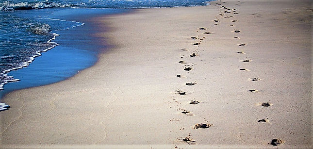 I will walk alongside you