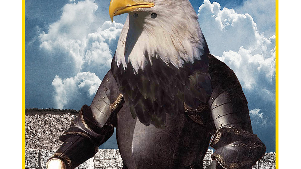 The Eagle Knight