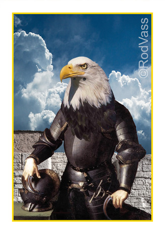 The Eagle Knight - By Rod Vass