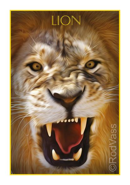 Lion - By Rod Vass