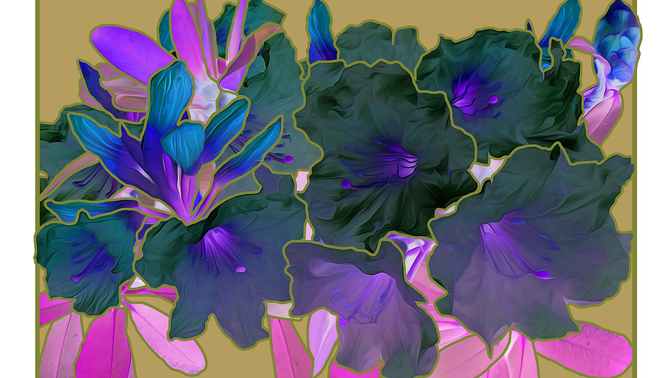 Black Rhododendron