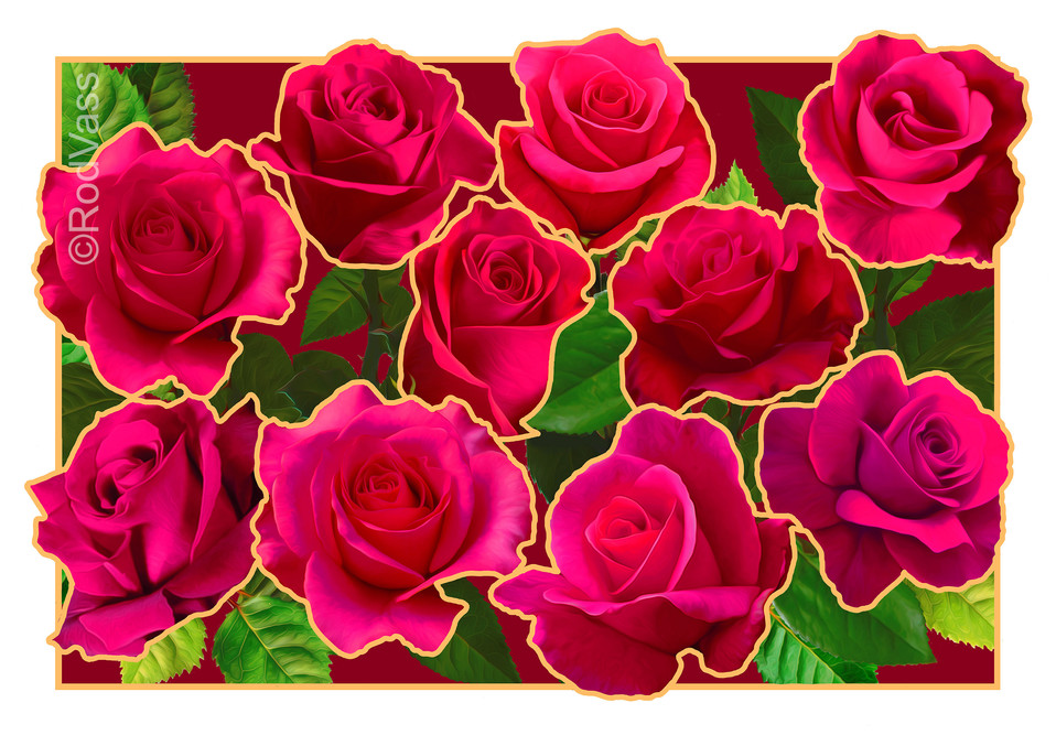Roses Red - By Rod Vass